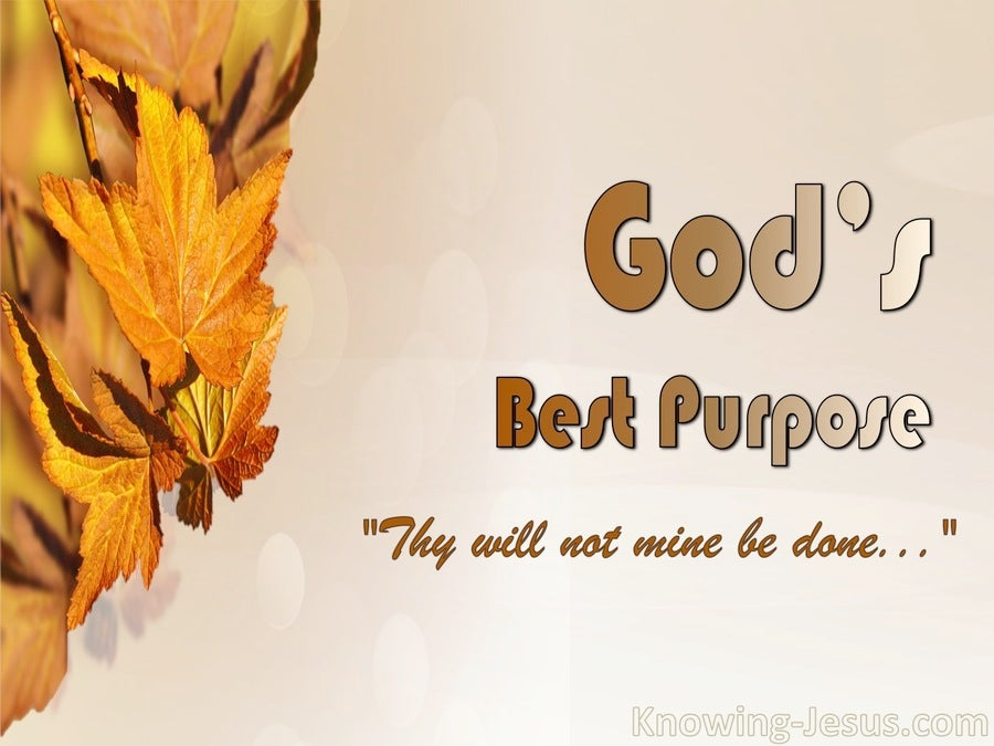 Luke 22:42 God's Best Purpose (devotional)04-01 (orange)