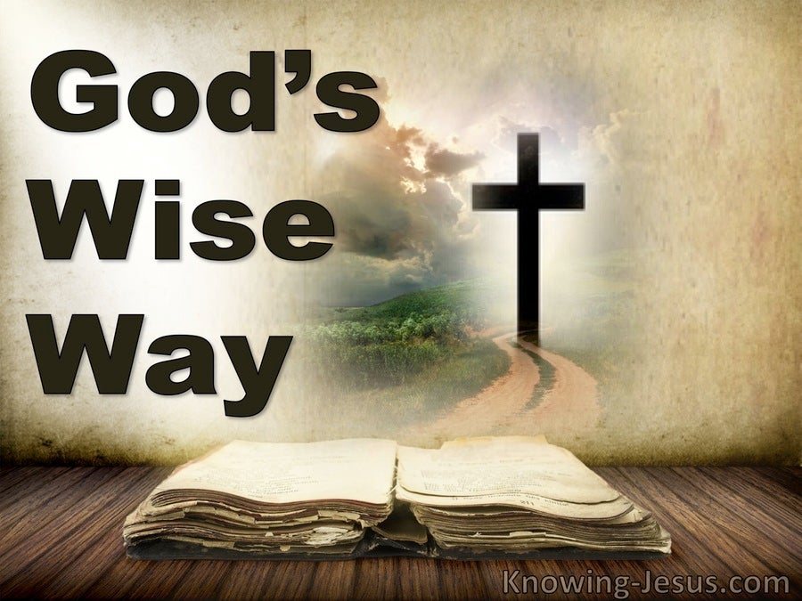 God's Wise Way (devotional)