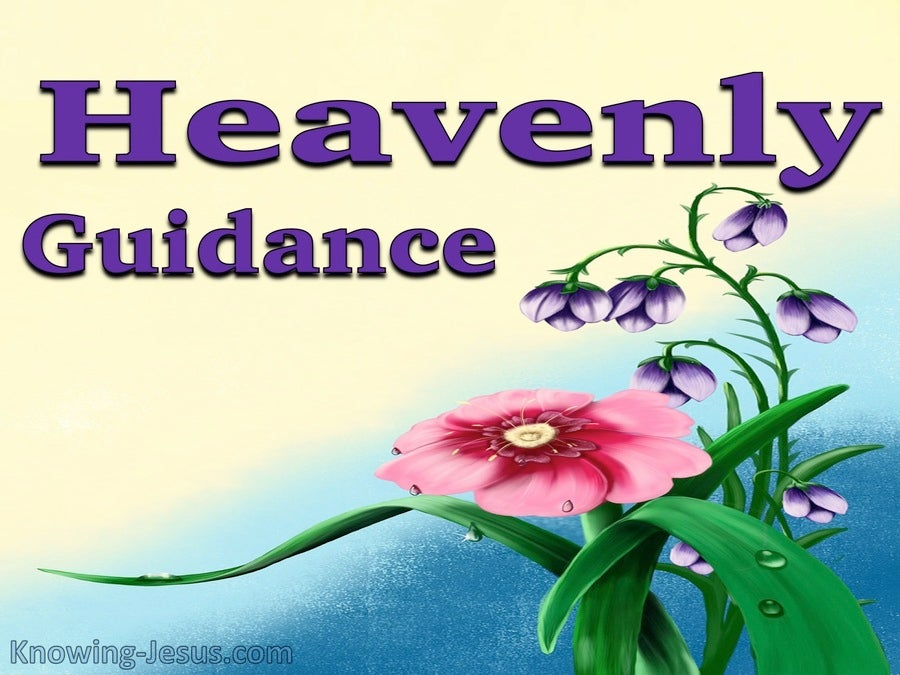 Heavenly Guidance (devotional) (blue)