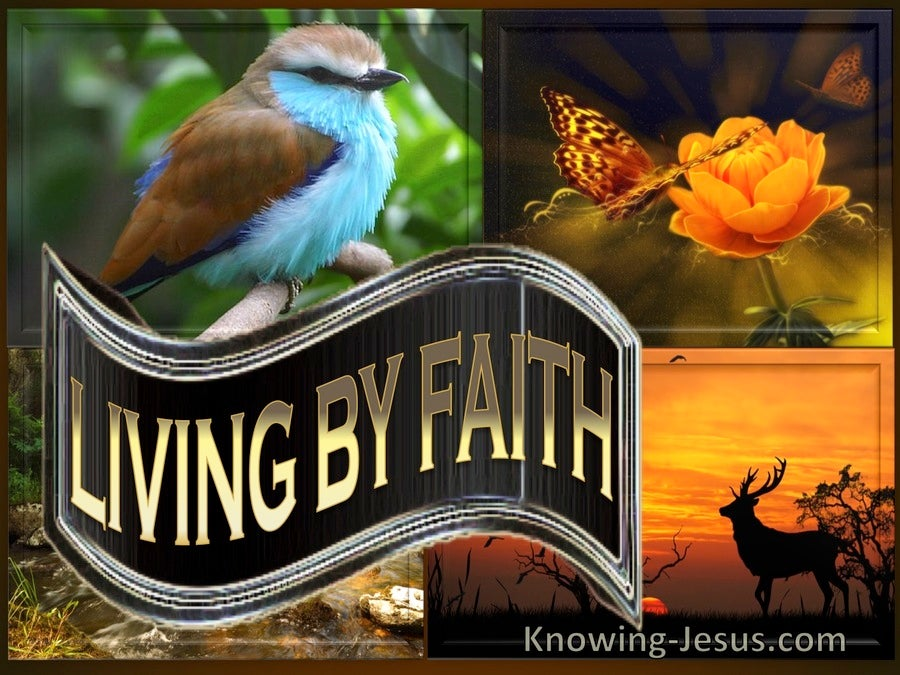 Galatians 3:11 Living By Faith (devotional)12:24   (brown)