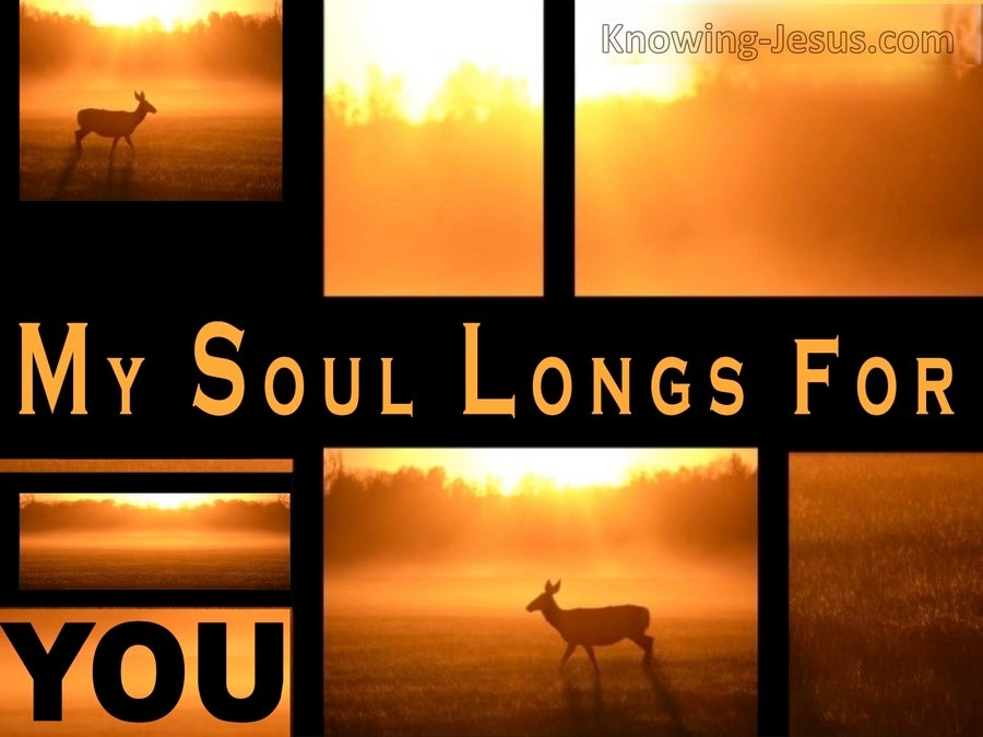 My Thirsty Soul (devotional) (orange) - Psalm 63:1