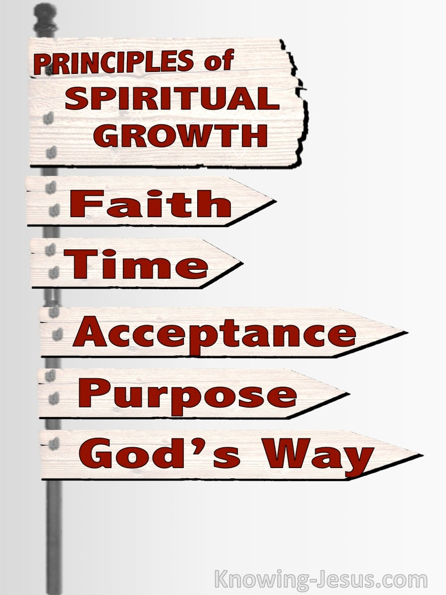 Principles Of Spiritual Growth (devotional) (white)