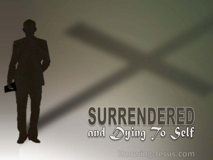 Surrendered and Dying To Self (devotional) (brown)