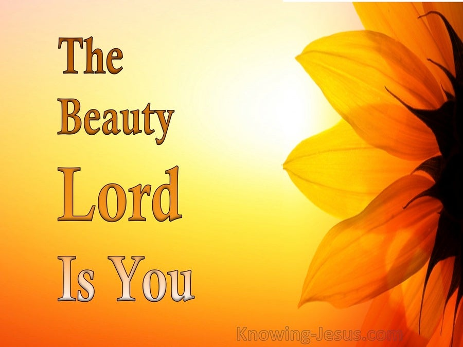devotional02-01 The Beauty Lord Is You (devotional)02-01 (orange)