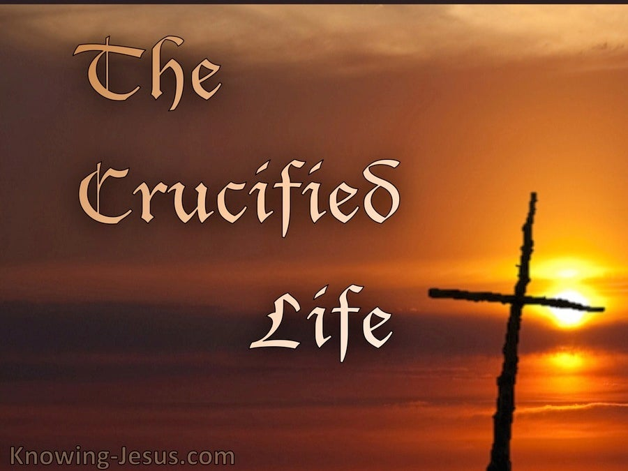 The Crucified Life (devotional)12-22   (brown)