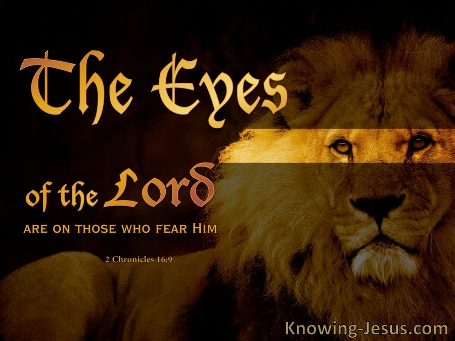 The Eyes of the Lord (devotional) (brown) - 2 Chronicles 16:9