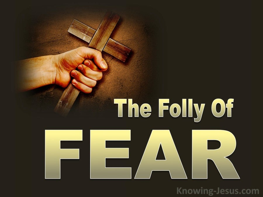 The Folly Of Fear (devotional) (brown)