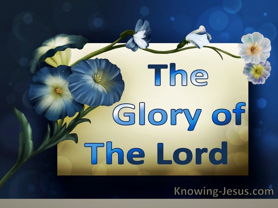 The Glory of the Lord (devotional) (navy) - Exodus 24:17