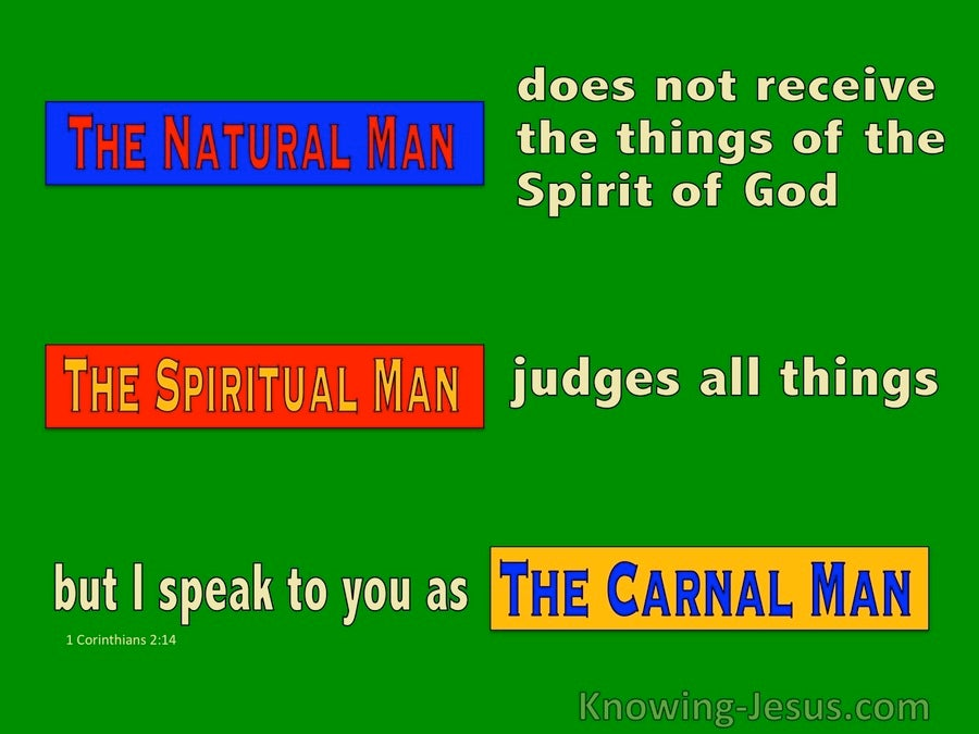 The Heritage Of Man (devotional) (green) -1 Corinthians 2:14