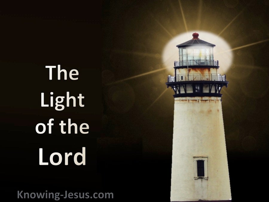 The Light Of The LORD (devotional) (cream) - Ephesians 5:8