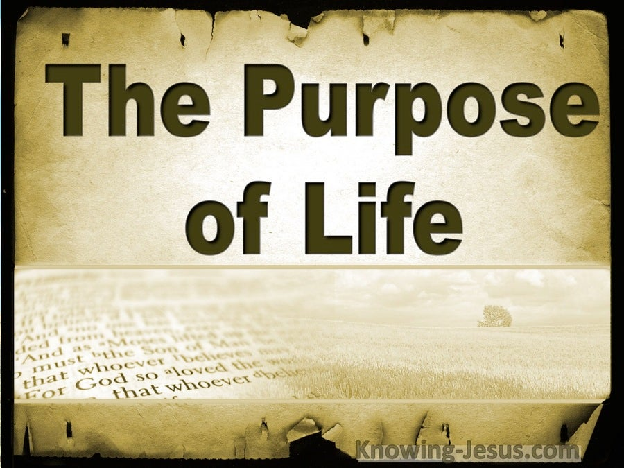 The Purpose Of Life (devotional)03-31 (gold)