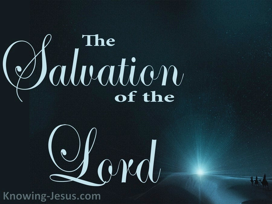 The Salvation Of The Lord  (devotional) (navy) Isaiah 9-6