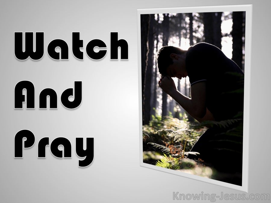 Watch And Pray (devotional) (gray) - Luke 21:36