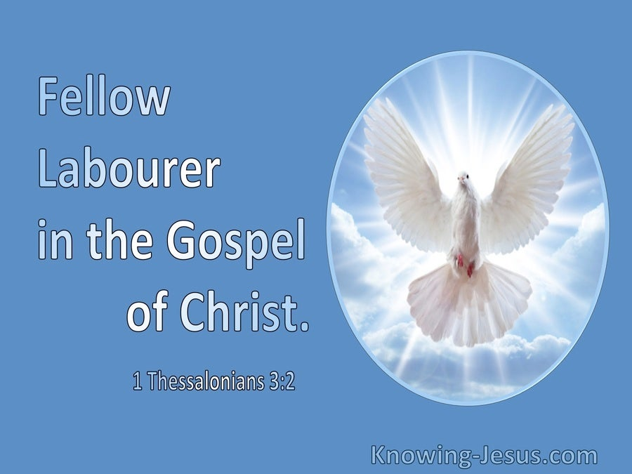 1 Thessalonians 3:2 Fellow Labourer In The Gospel Of Christ (utmost)11:10