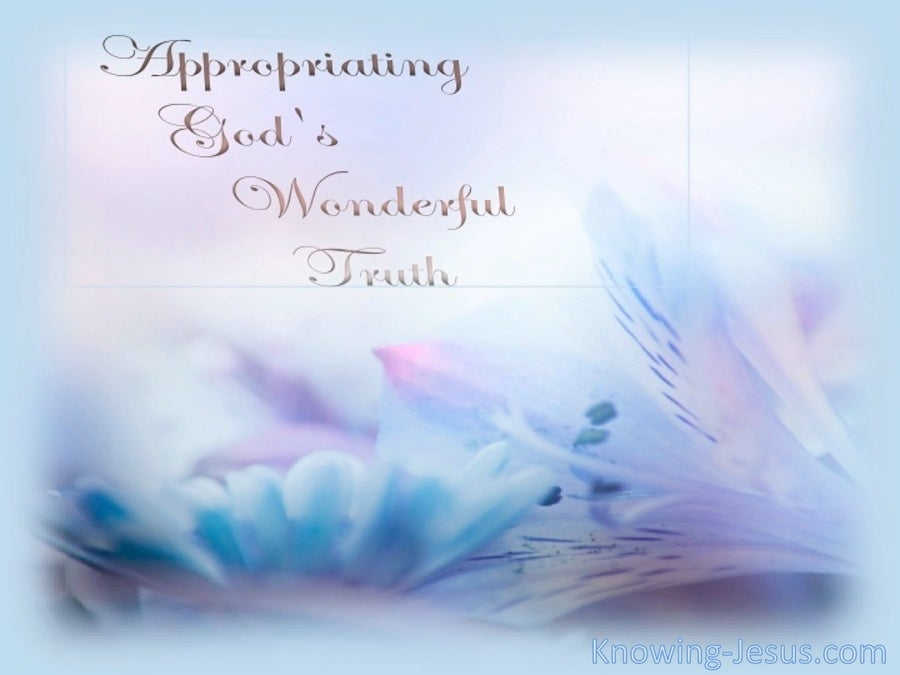 Appropriating God's Wonderful Truth (devotional) (blue)