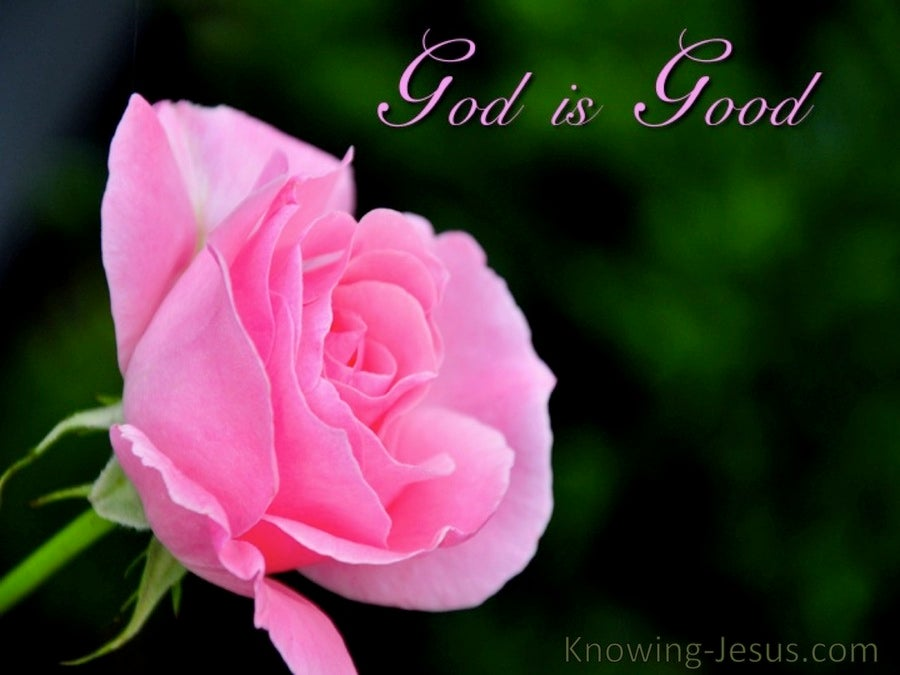Our Good God (devotional) (pink)