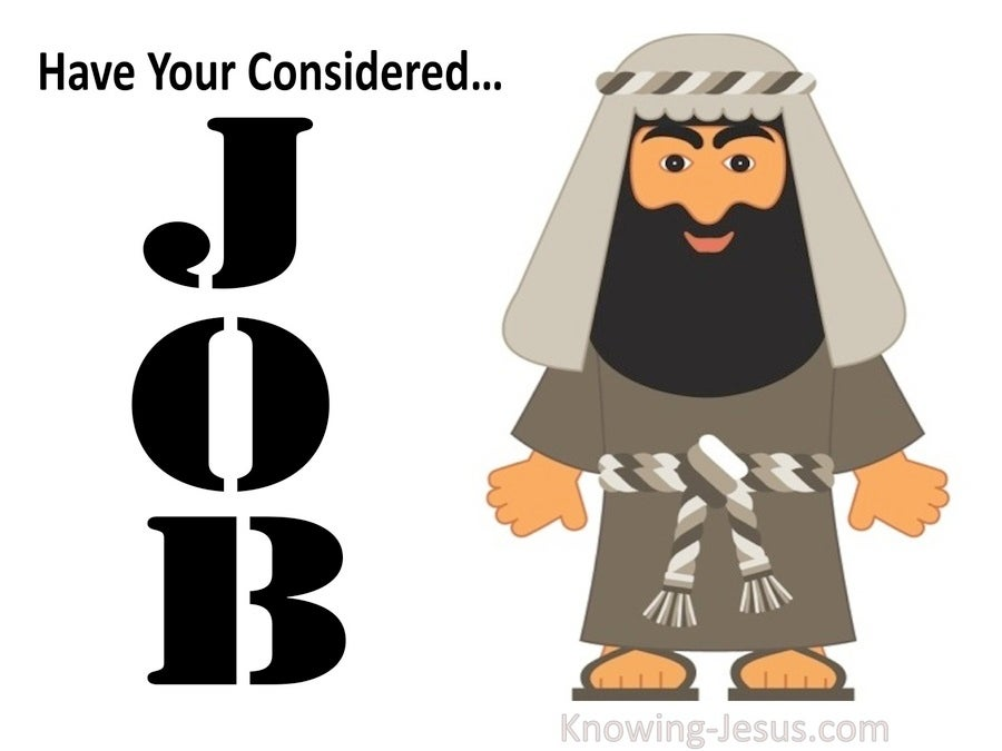 Have you Considered Job (devotional) (white)