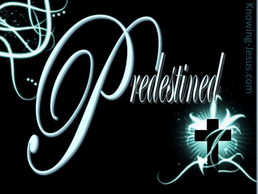 Predestined by God (devotional) (black) - Romans 8:29