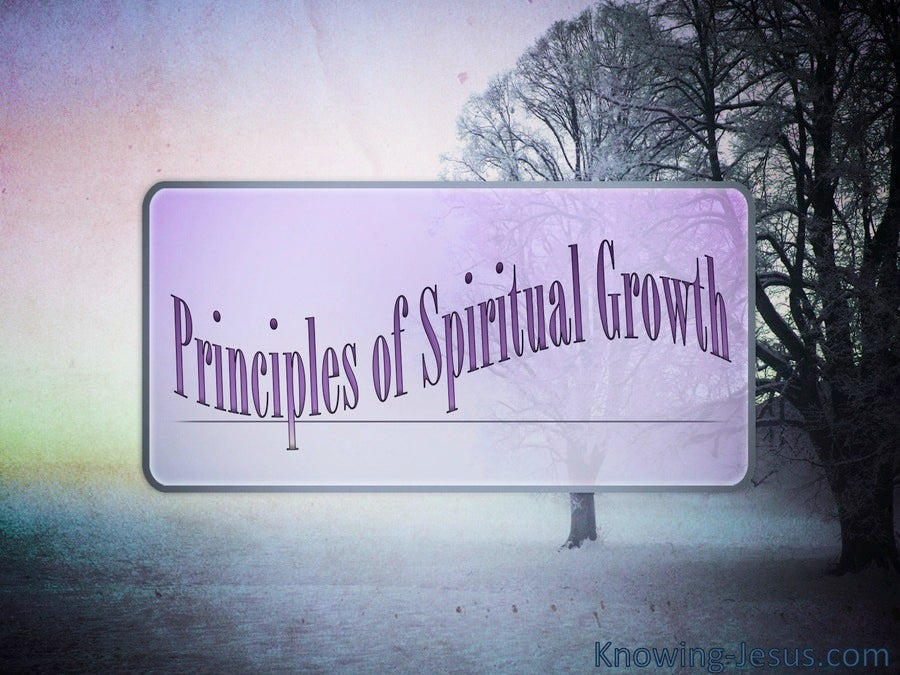 Principles Of Spiritual Growth (devotional) (purple)