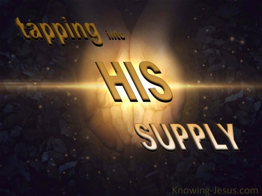 Tapping into His Supply (devotional) (brown)