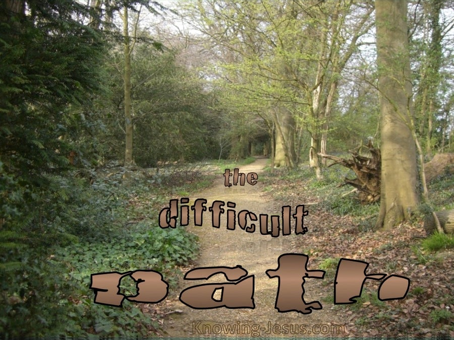 The Difficult Path (devotional)02-28 (brown)