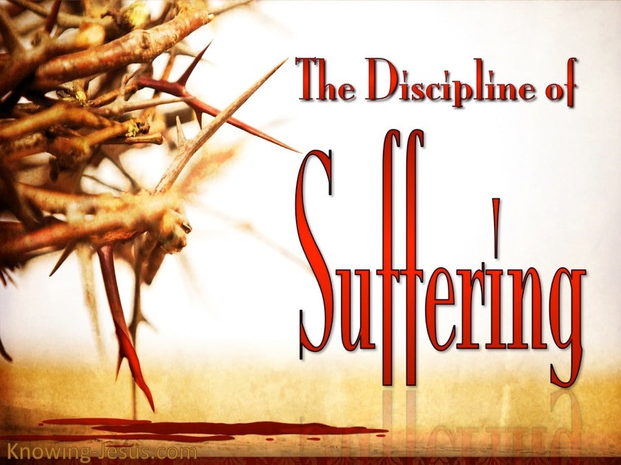The Discipline of Suffering (devotional) (red)