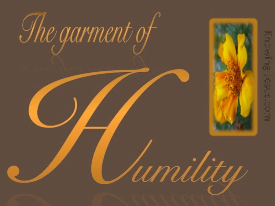 The Garment Of Humility (brown)