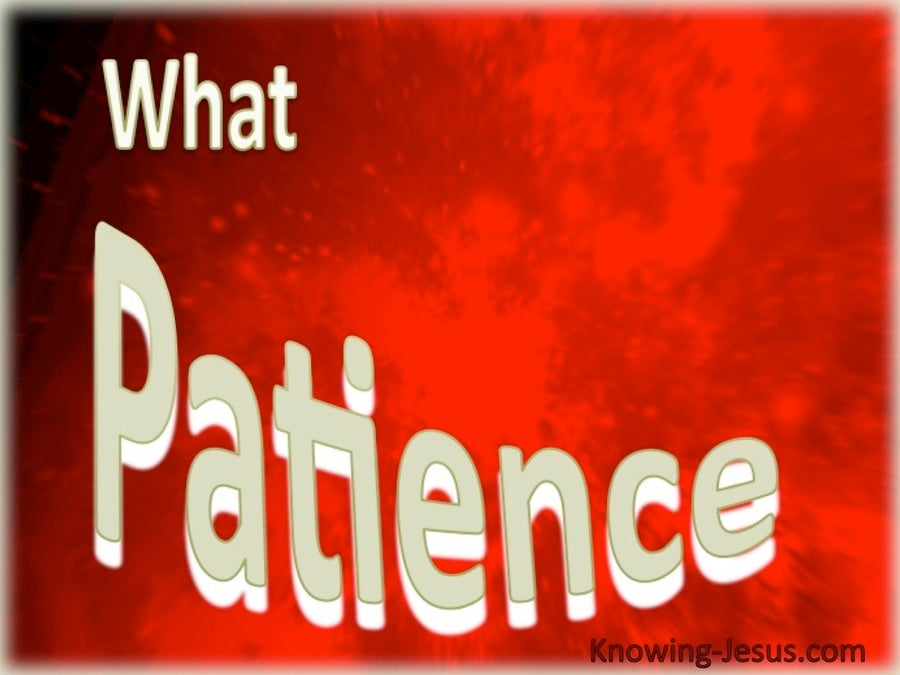 What Patience (red)