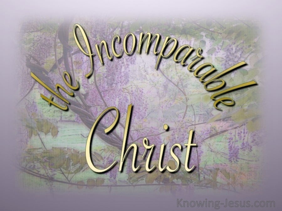 The Incomparable Christ (devotional)10-17 (pink)