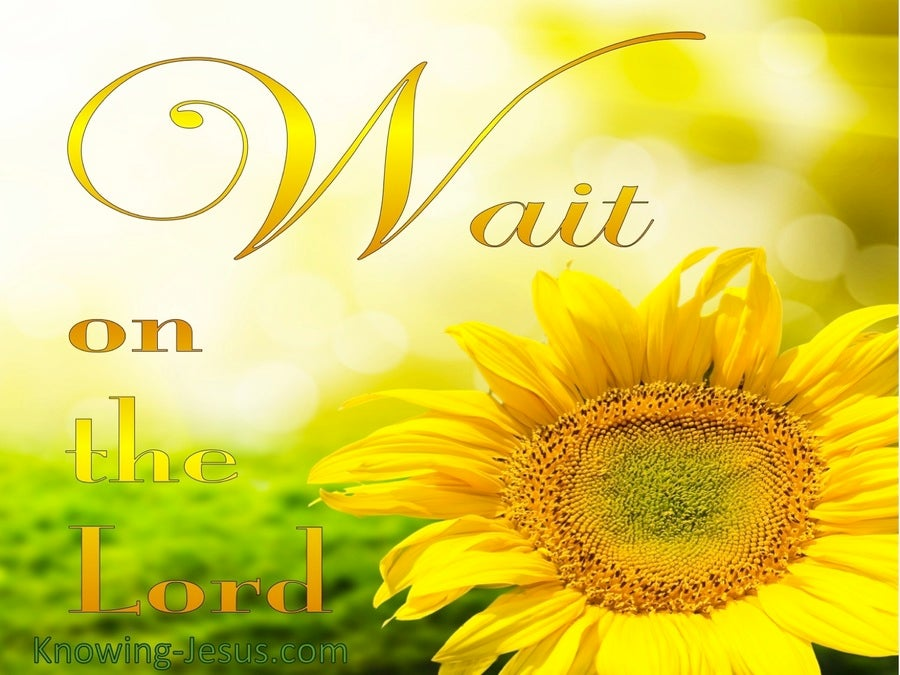 Psalm 27:14 Wait On The Lord (yellow)