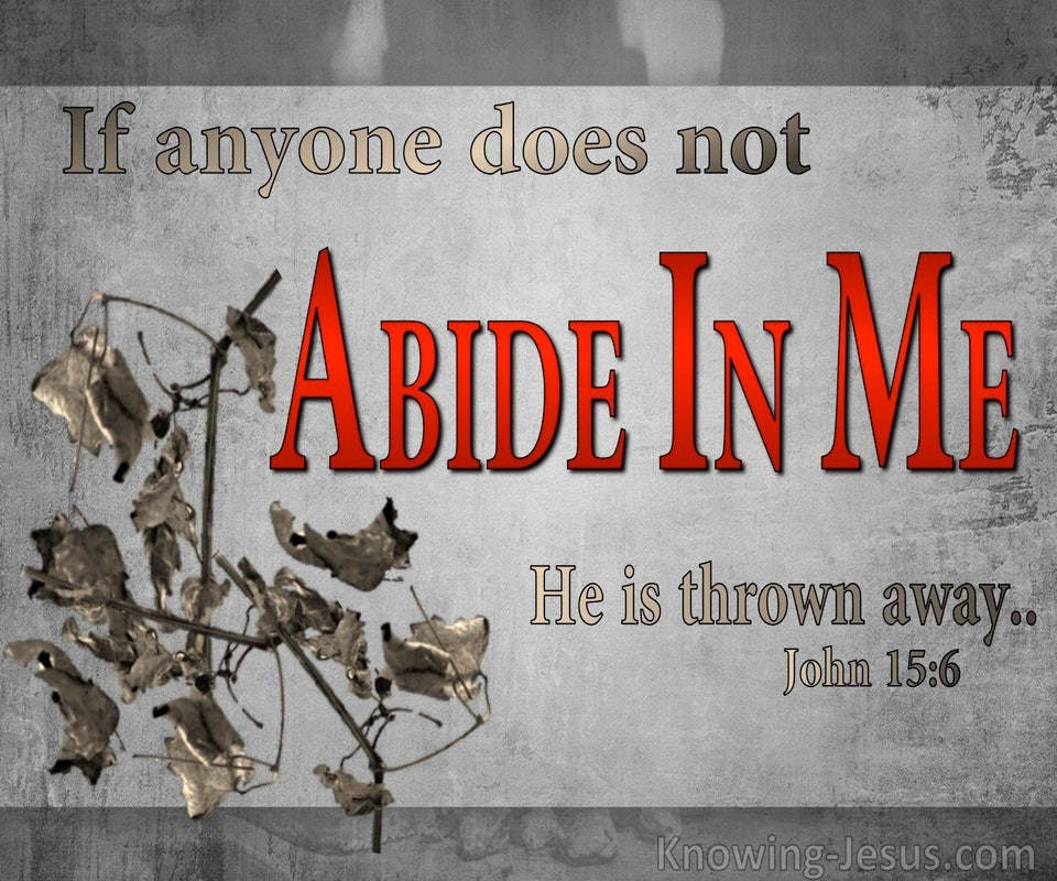 John 15:6 He Who Does Not Abide In Me Is Thrown Away (gray)