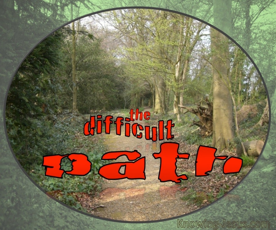 The Difficult Path Devotional (green)