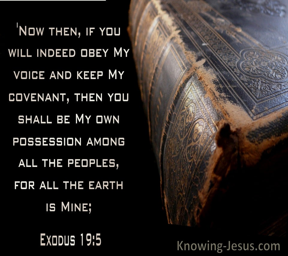 Exodus 19:5 If You Will Obey My Voice Then You Will Be My Possession (black)