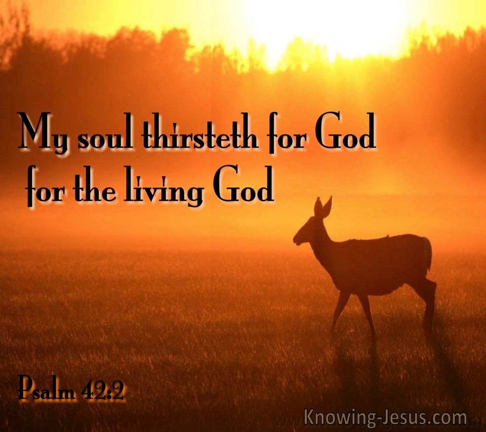Psalm 42:2 My Soul Is Thirsty For God (brown)