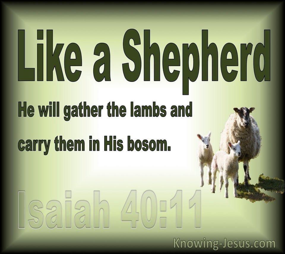Isaiah 40:11 He Will Gather The Lambs (green)