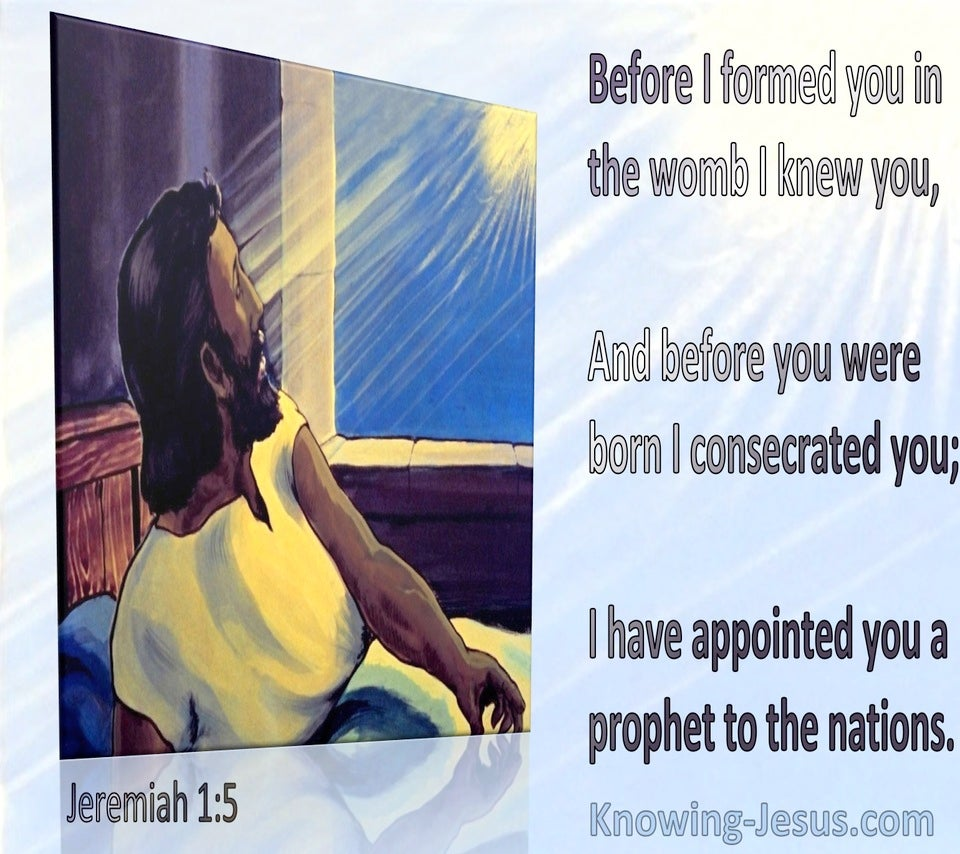 Jeremiah 1:5 Before I Formed You In The Womb I Knew You (blue)