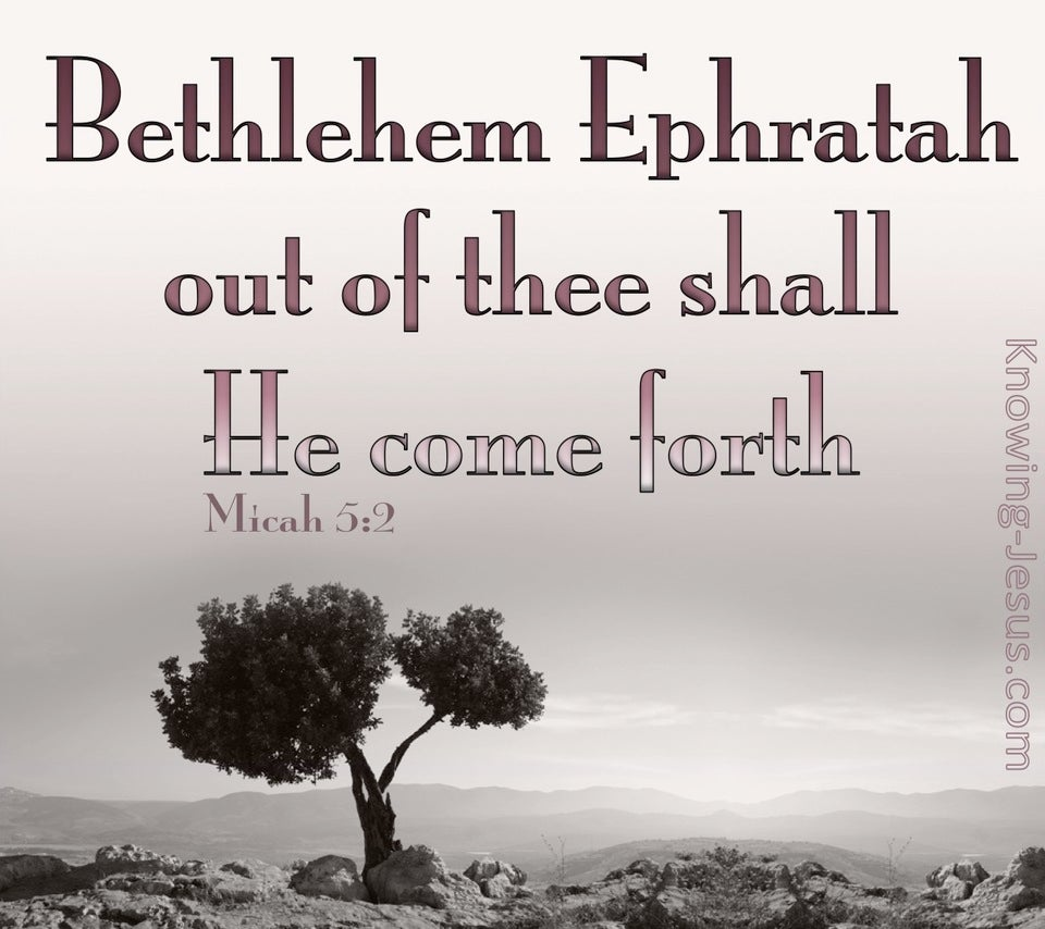 Micah 5:2 Out Of Thee Shall He Come Forth (pink)