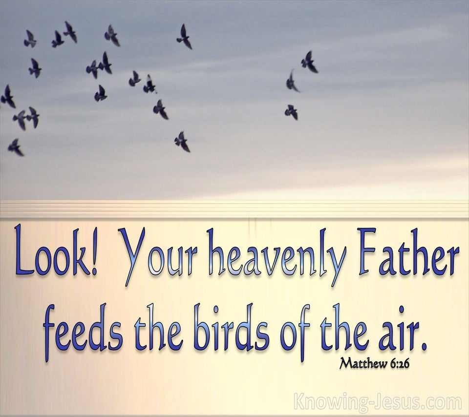 Matthew 6:26 Look At The Birds Of The Air (beige)