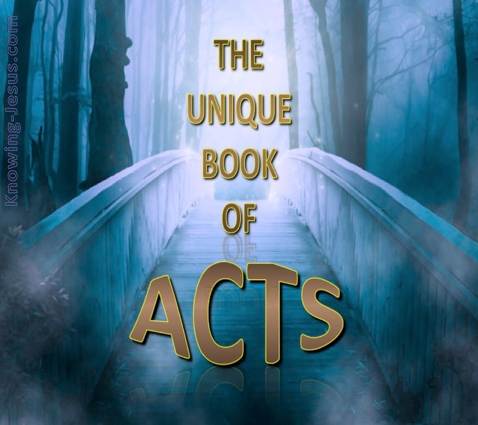 The Unique Book of Acts (devotional) (blue)