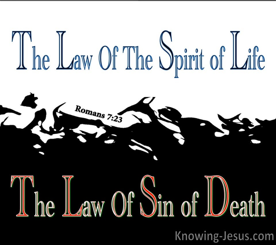 Romans 7:23 The Law of Sin (blue)