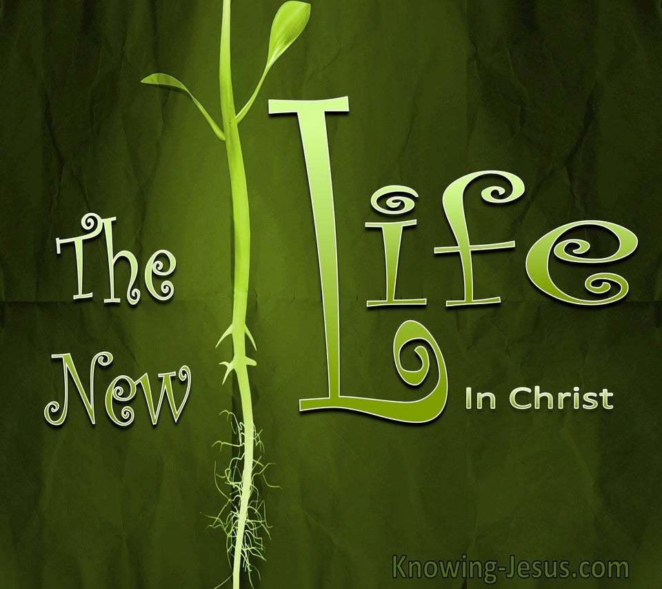 The New Life (devotional) (green)