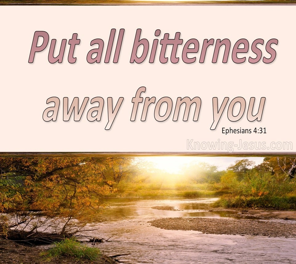 Ephesians 4:31 Put Away All Bitterness And Wrath (pink)