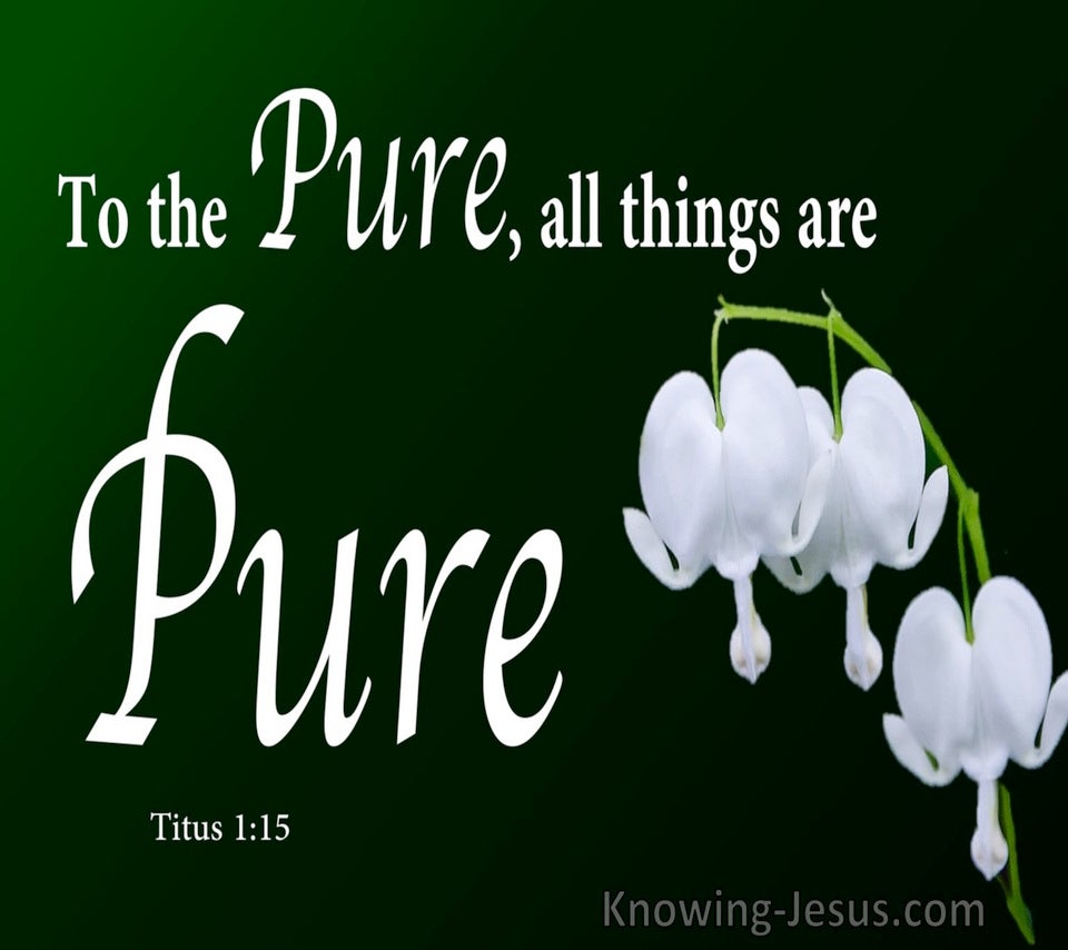 Titus 1:15 To Pure All Things Are Pure (white)