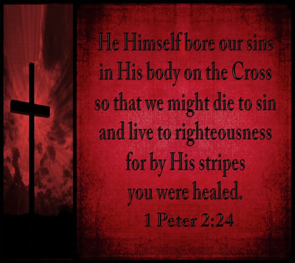1 Peter 2:24 He Bore Our Sins (black)