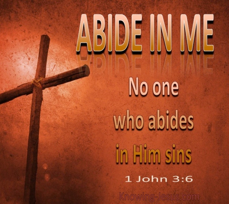 1 John 3:6 No One Who Abides In Me Sins (brown)