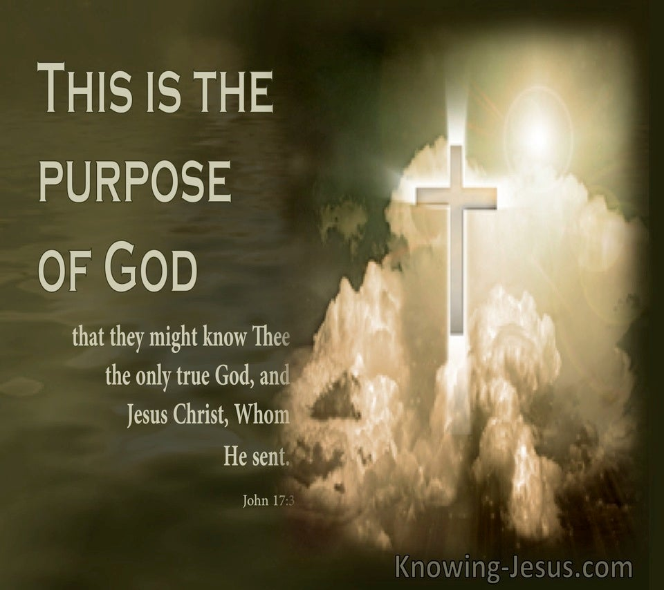 John 17:3 This Is The Purpose Of God (sage)