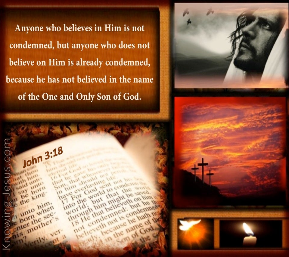 Where Is Your Trust (devotional) (brown) - John 3:18